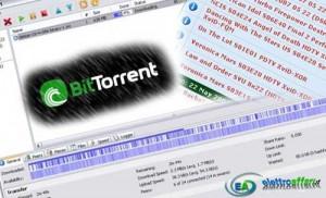 file torrent sicuri