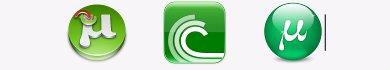 Guida BitTorrent e File Torrent in Italiano