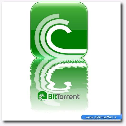 Immagine generica sul protocollo BitTorrent