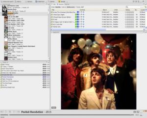 Interfaccia del programma Jaangle per ascoltare musica sul PC
