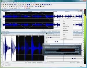 Interfaccia grafica del programma Wavosaur