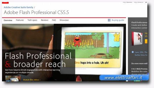 Immagine del programma Adobe Flash