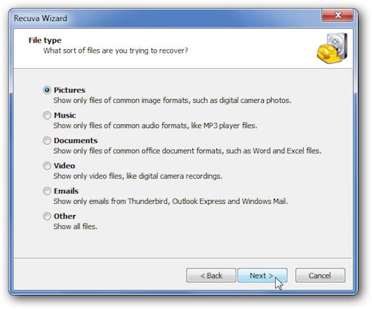 Schermata nella quale il programma ci chiede che tipo di file vogliamo recuperare