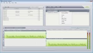 Interfaccia del programma RecordForAll