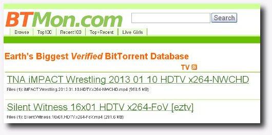 Immagine del sito BTMon per scaricare torrent