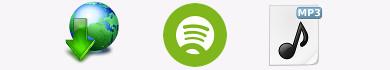 Come scaricare la musica da Spotify