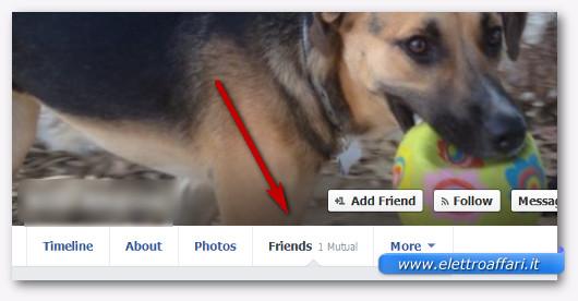 Immagine del menù per vedere la lista degli amici di Facebook