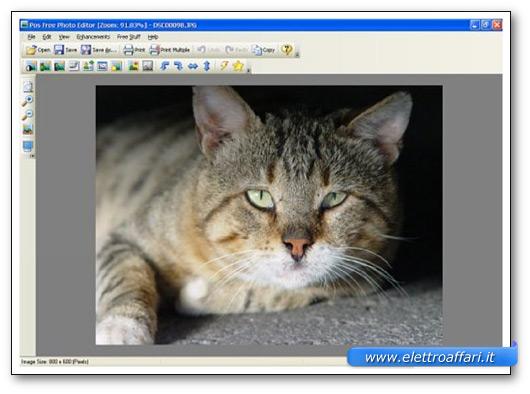 Immagine del programma Pos Free Photo Editor