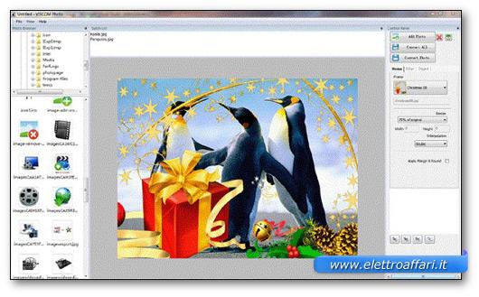 Immagine del programma Viscom Photo
