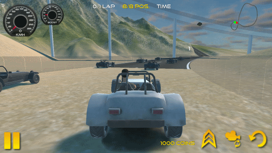 auto da corsa deserto