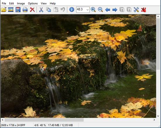 5 Programmi Gratis per Aprire File DNG - IrfanView