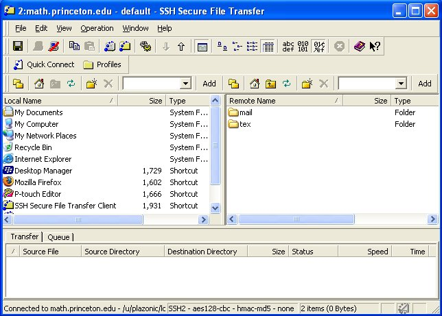 File Transfer torrent