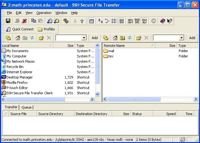 File Transfer torrent